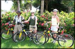 Biking Nature Tour