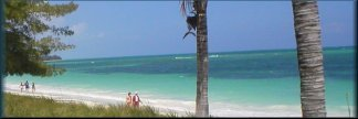 Grand Bahama Beaches